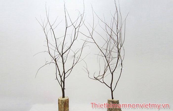 Huong Dan Trang Tri Cay Mai Gia Ngay Tet Cuc Dep 4